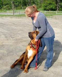 Dogs | Dog Training | Dallas Dog Training