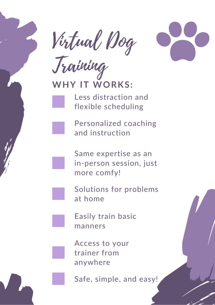 What's great about virtual dog training