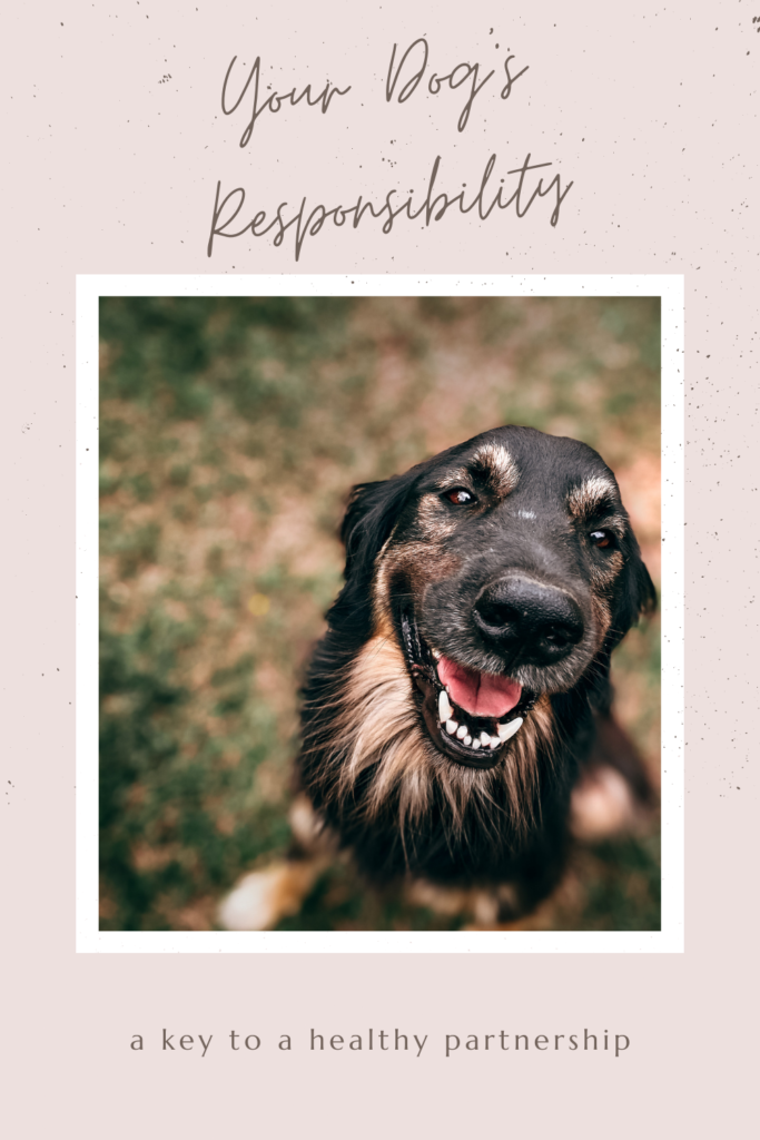 Your dog's responsibility in dog training.